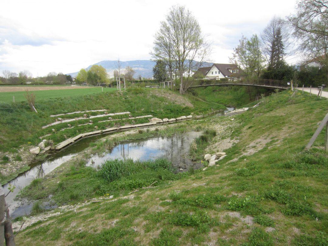 Renaturation de la Seymaz, Secteur Pont Bochet – Thônex/Vandœuvres (Suisse)